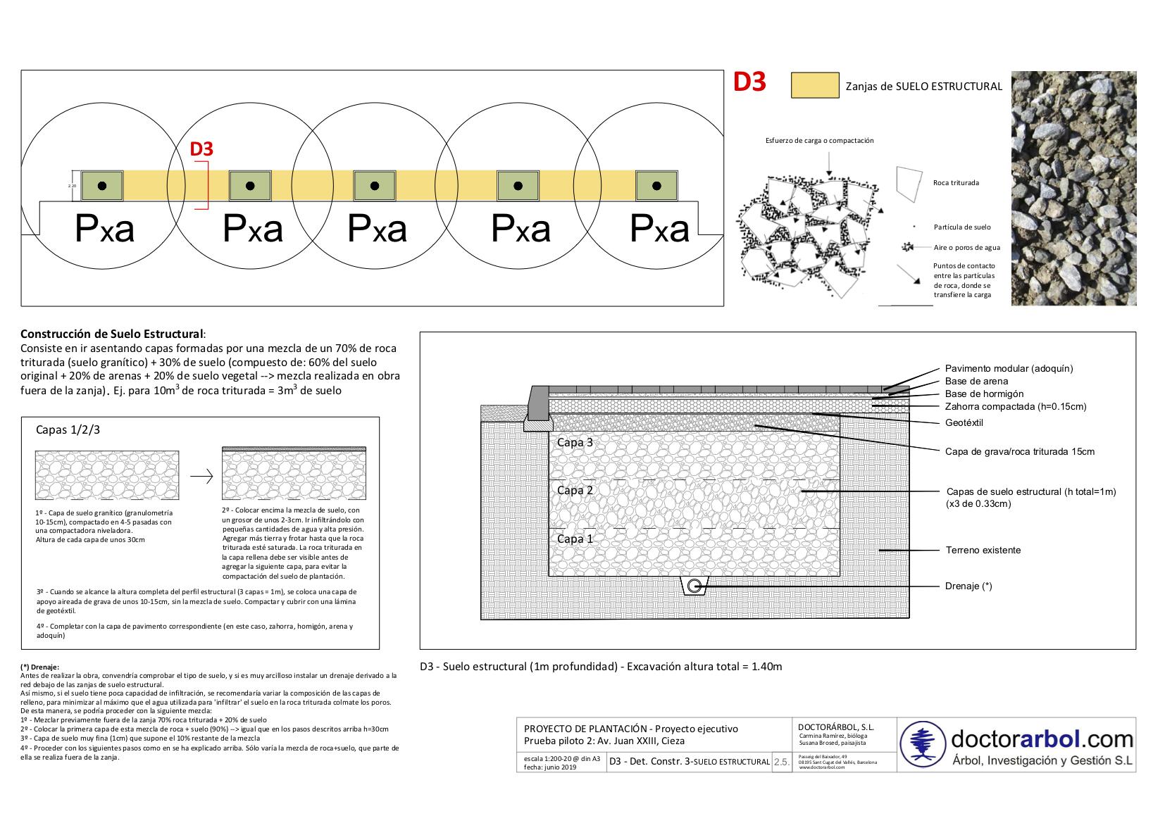 Implementación del 'Plan Estratégico de Ecología Urbana y Biodiversidad 2017-2032'. Propuesta de mejora del suelo de plantación y aumenta del volumen del alcorque con SUELO ESTRUCTURAL, Av. Juan XXIII, Cieza (Murcia).